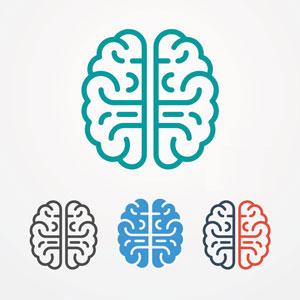 3-brains-in-1.jpg